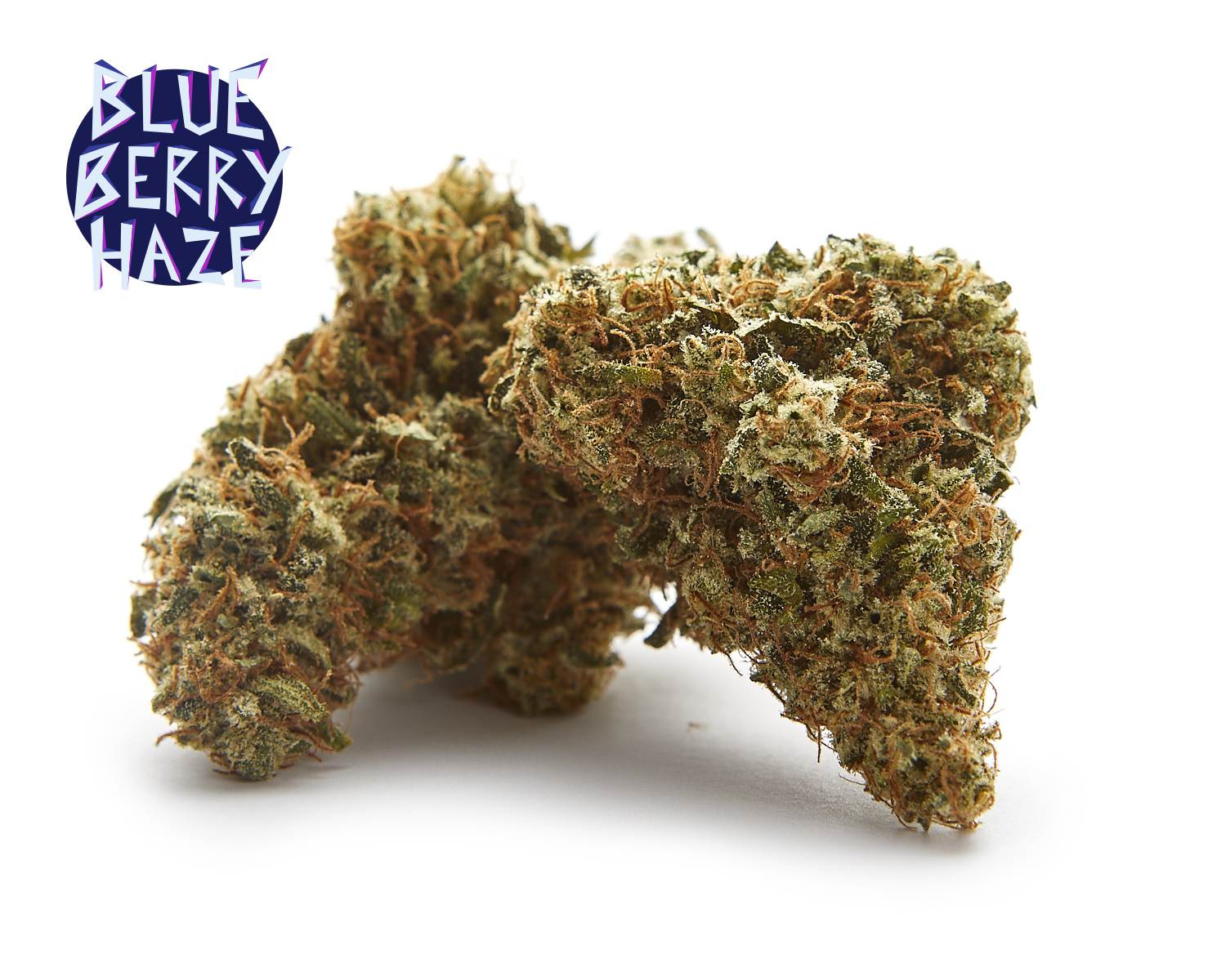 HAZY HILL FARM – BLUEBERRY HAZE_1